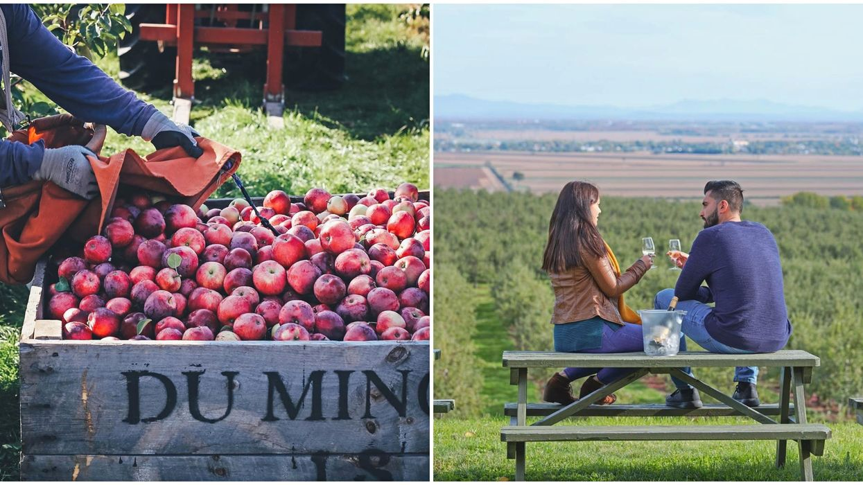 11 Quebec Cideries For The Ultimate Fall Road Trip