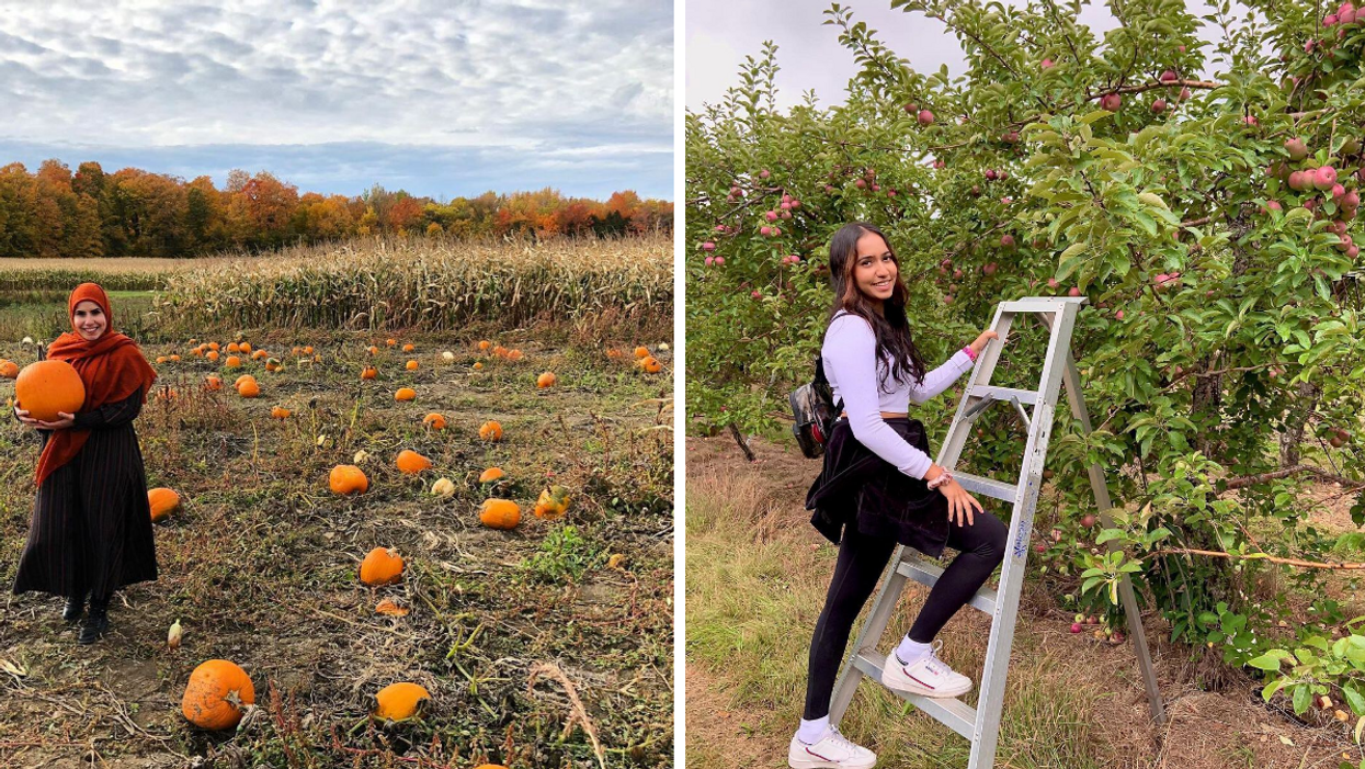 14 Fall Activities Every True Montrealer Has Done At Least Once