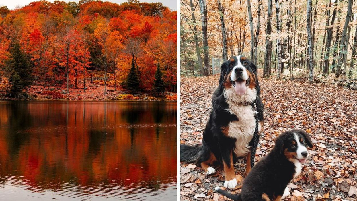 6 Adorable Small Towns In Quebec Where You Can See Amazing Fall Colours