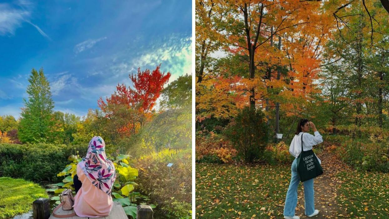 6 Places In Montreal With Stunning Fall Foliage Views That Aren't The Mount Royal Lookout