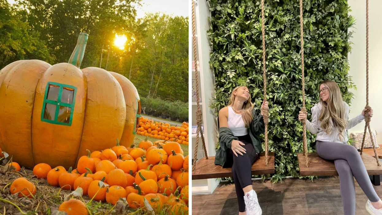 9 Things To Do Around Montreal To Celebrate The First Weekend Of Fall