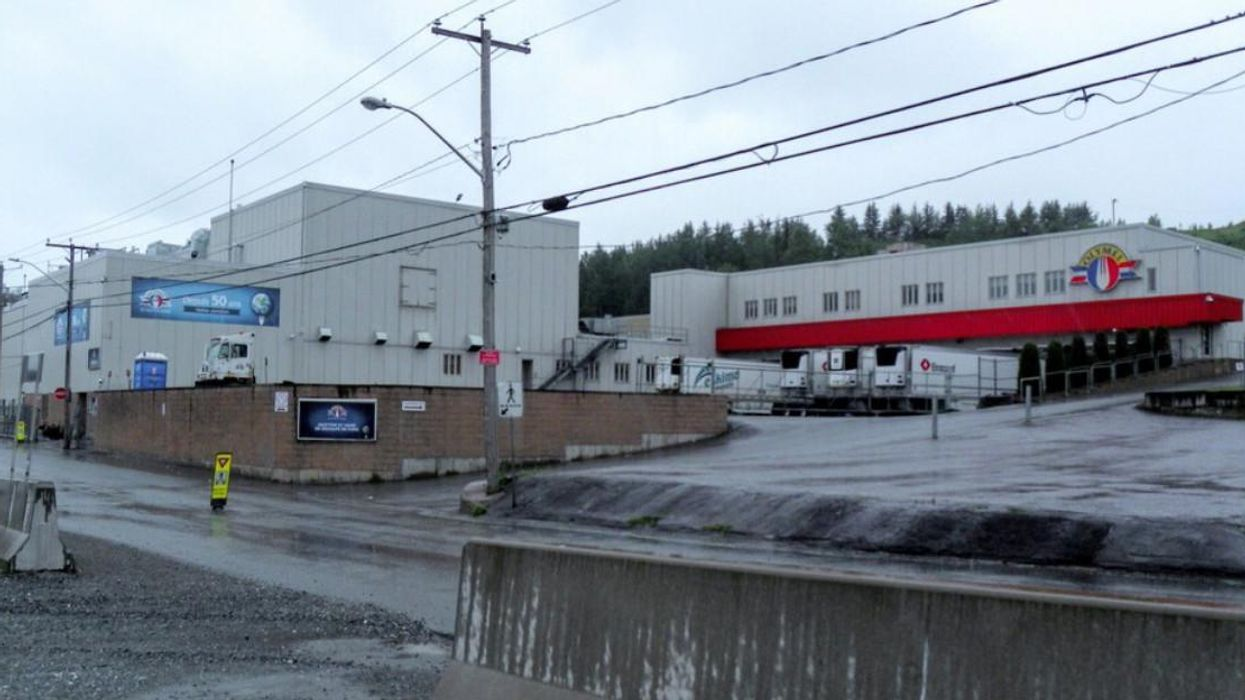 A Labour Dispute At A Quebec Pork Factory Could Force 'Thousands' Of Pigs To Be Euthanized
