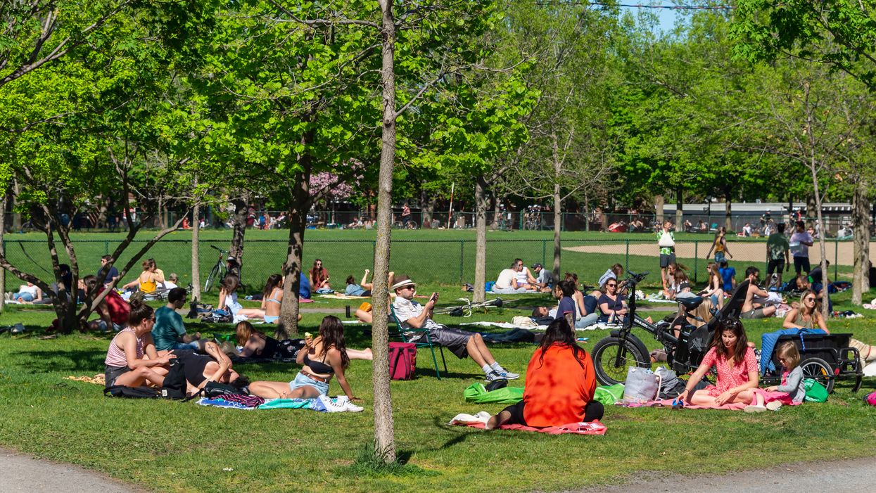 This Report Shows Which Montreal Boroughs Have The Most Park Space Per 1,000 Residents