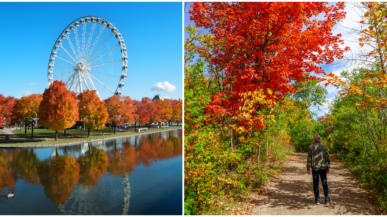 Here's How To Make The Best Of Fall In Montreal Even Though You Can't See Your Friends