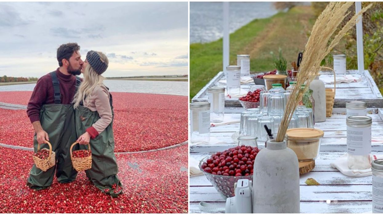 You Can Stuff Your Face With Cranberry Treats At This Dreamy Fall Festival In Quebec