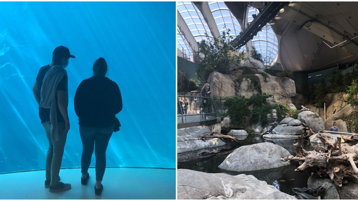 I Visited The New And Improved Montreal Biodome & Here's What It's Really Like (PHOTOS)