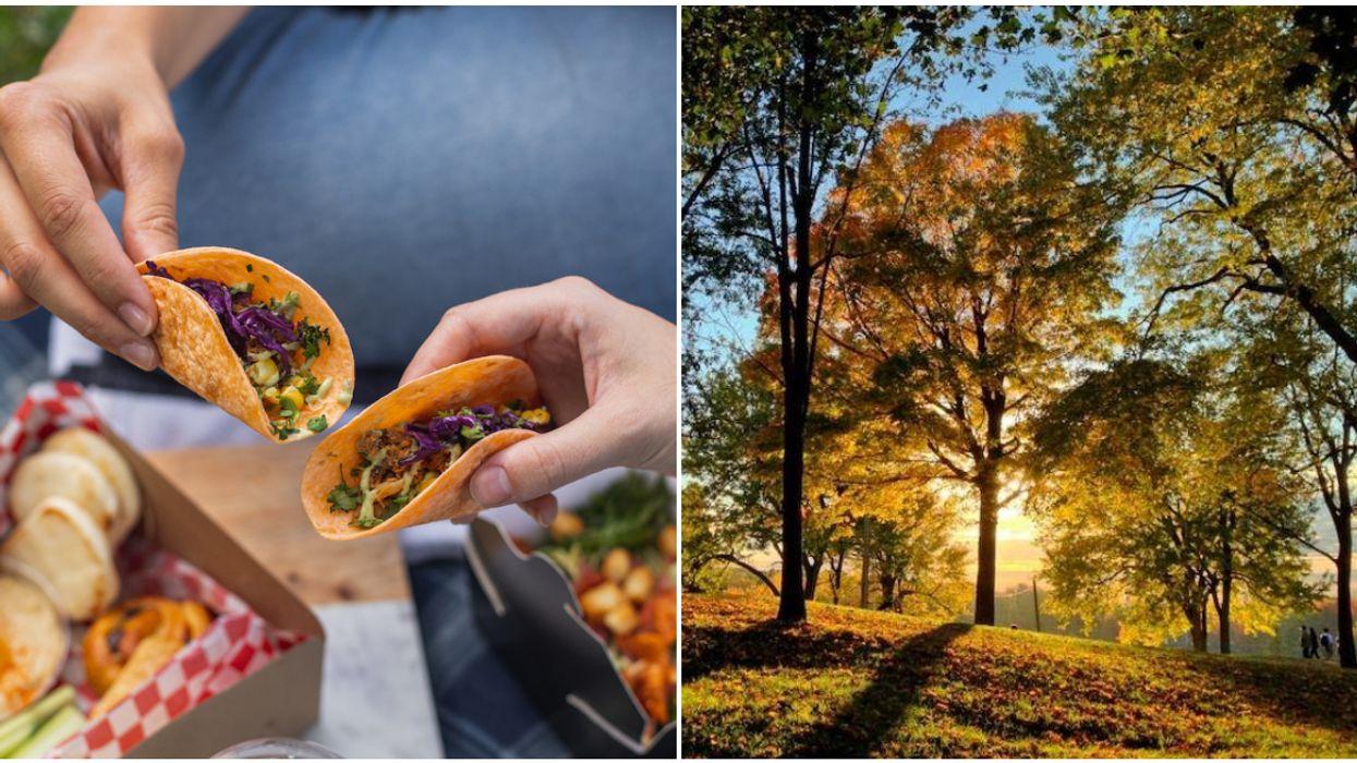 Mount Royal's Beaver Lake Pavilion Will Have Taco Picnic Boxes This Fall