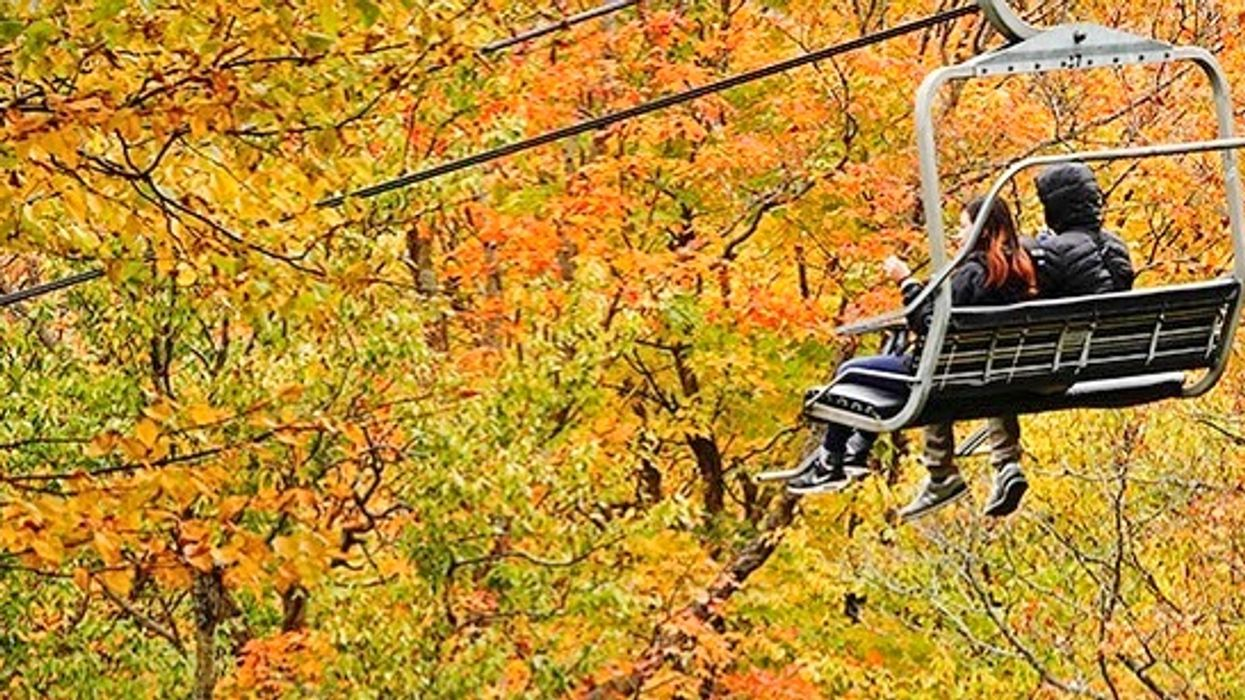 6 Fall Festivals Happening Around Quebec To Celebrate Your Favourite Season