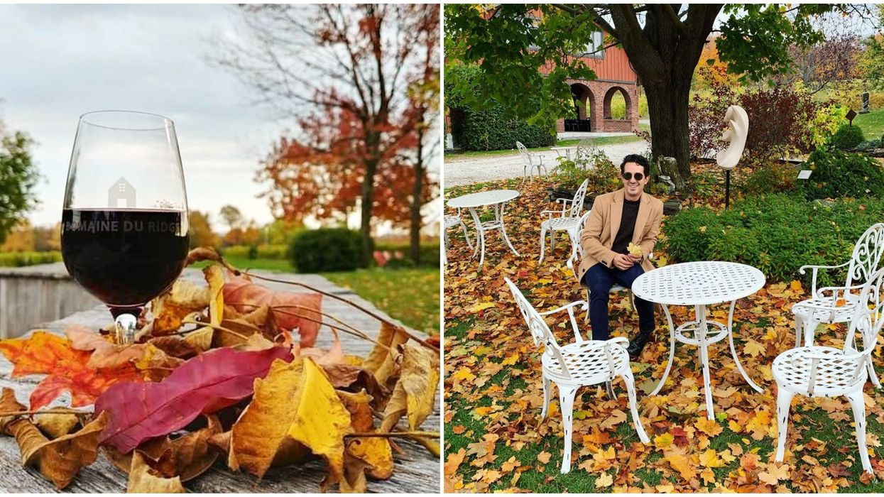 9 Wineries Less Than 2 Hours From Montreal To Visit When The Leaves Start Changing Colours