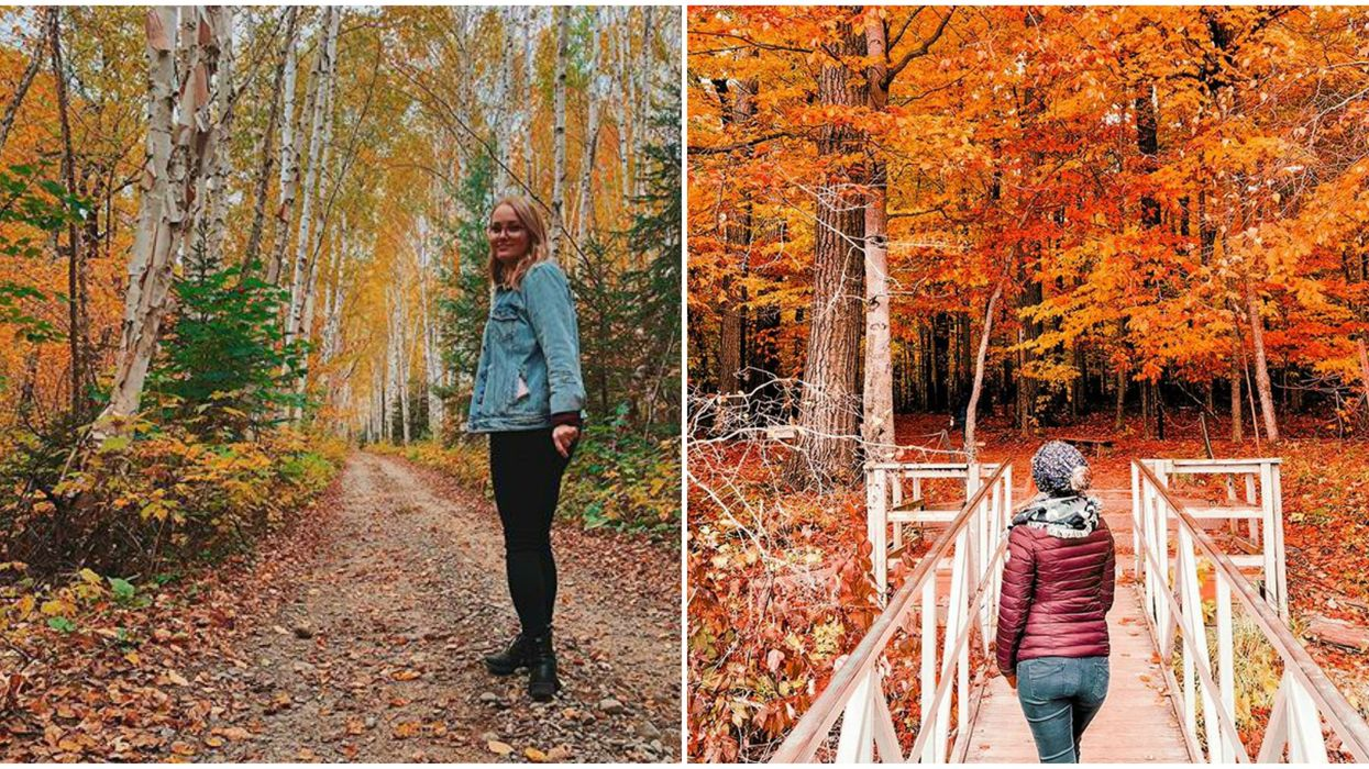 8 Quebec Campsites To Book Now For Magnificent Fall Views