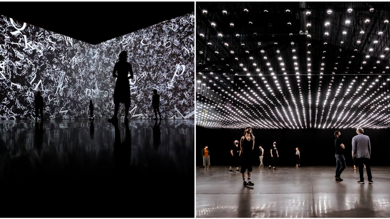 A Huge Immersive Exhibition Is Opening In Montreal & It Looks Mesmerizing