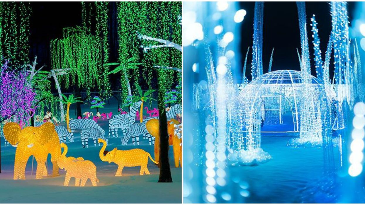 Laval's Illumi Festival Of Lights Is Back This Year With 18 New Magical Worlds To Explore