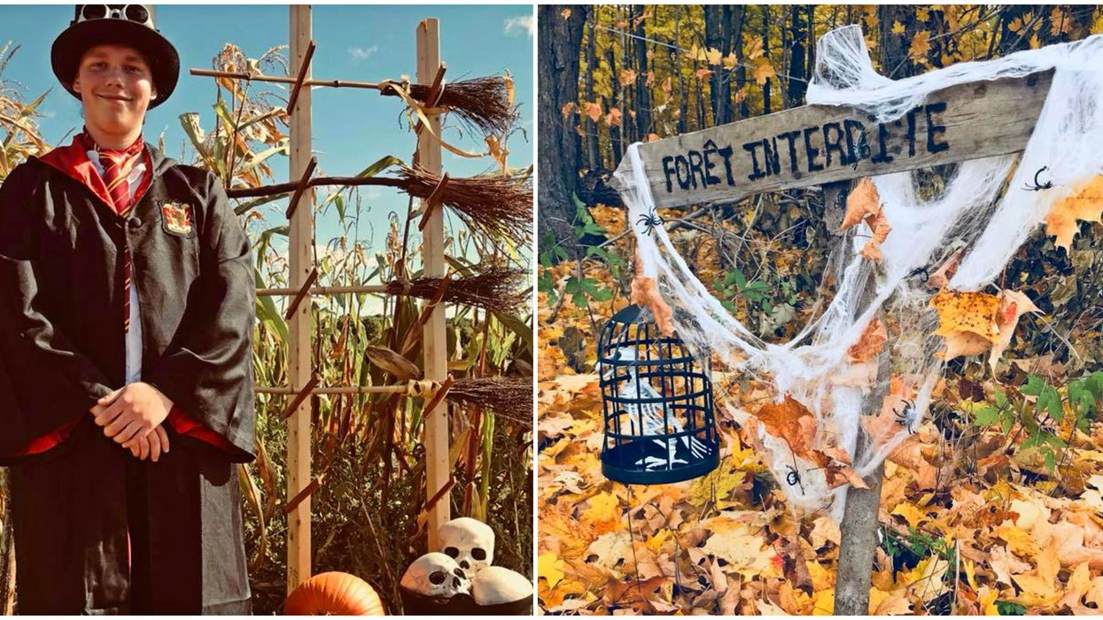 This Harry Potter Halloween Maze Is Less Than 1 Hour From Montreal
