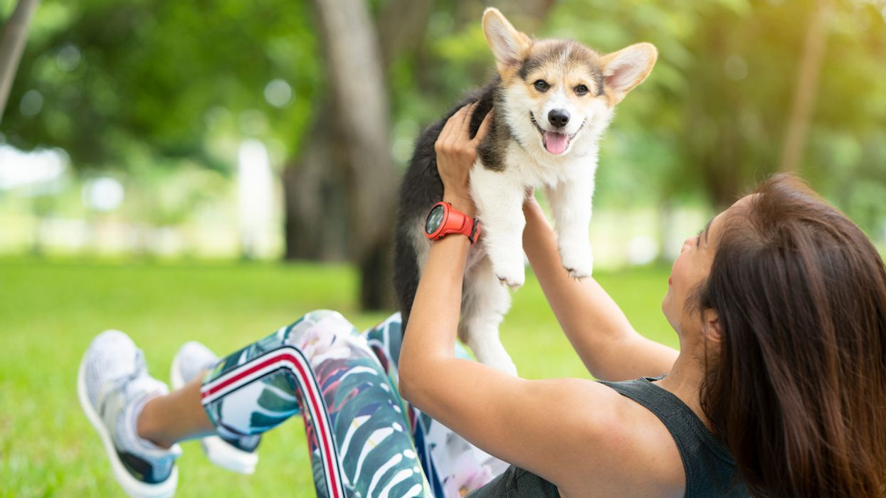 You Can Do Yoga With Puppies At This Free Dog-Friendly Festival In Laval This Weekend