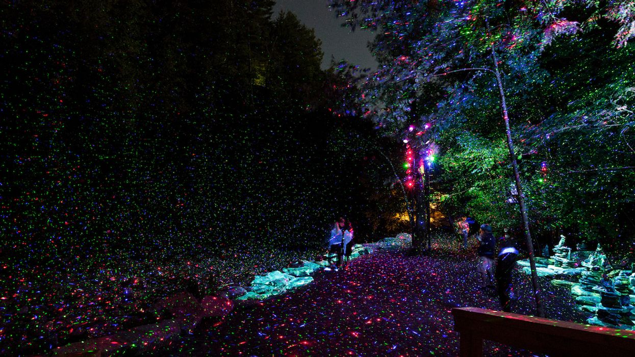 This Enchanted Forest In Quebec Will Make You Feel Like You've Stumbled Into A Fairytale