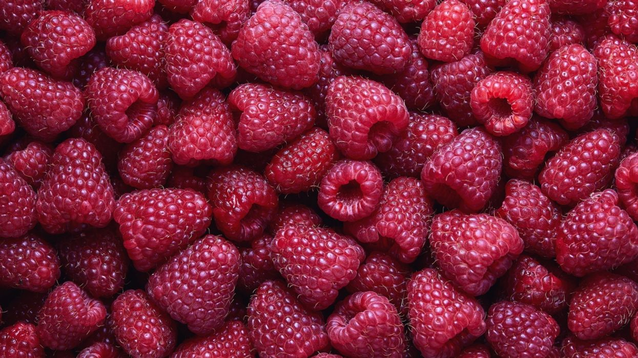 Raspberry Products Have Been Recalled in Quebec Due To The Presence Of Virus