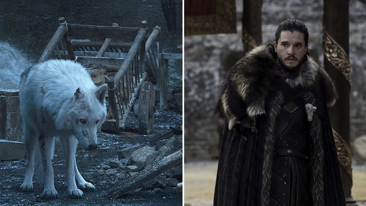 Game Of Thrones Explains Why Jon Snow Didn't Say Goodbye To Ghost... And It's The Worst Reason Ever