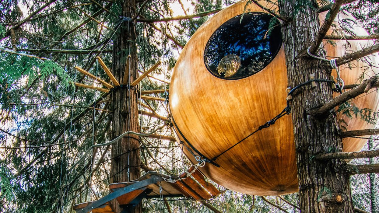 You Can Stay In This Rainforest Treehouse Sphere In Canada This Spring (Photos)