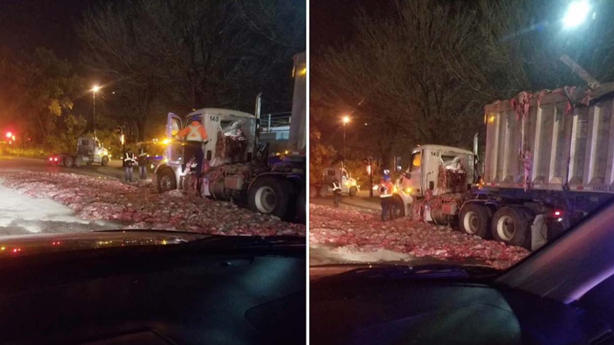 Truck Containing Raw Animal Flesh And Organs Spills All Over Montreal Street (Photos)