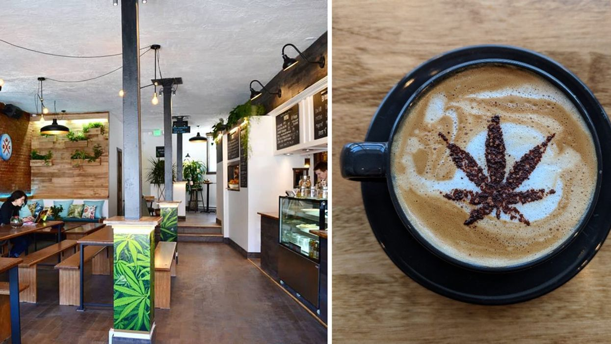 """Montreal Has A Brand New """"Weed"""" Themed Café"""