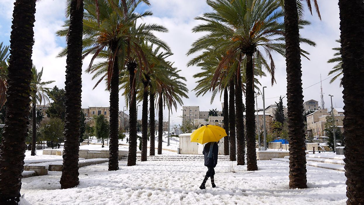 It Snowed In Florida For The First Time In 30 Years And People Are Losing Their Minds (Videos)