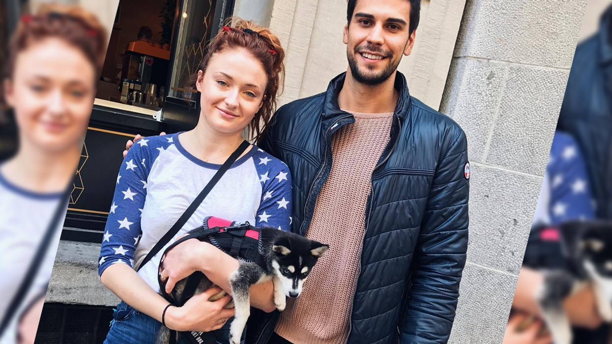 Sophie Turner Spotted In Montreal Walking Her New Adorable Puppy This Weekend