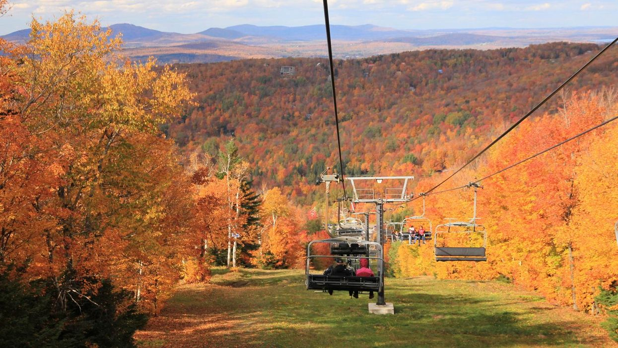 """The """"Fall Festival"""" Near Montreal You Must Visit This Month"""