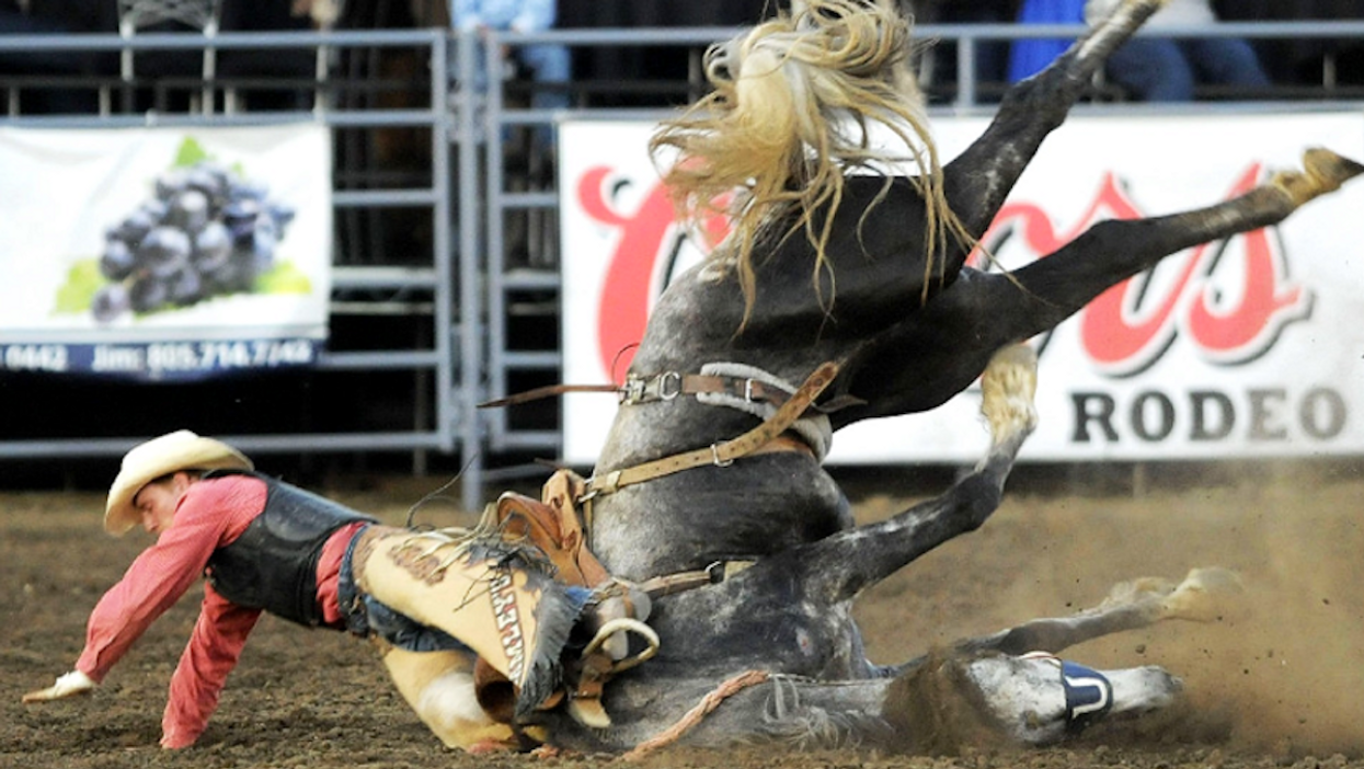 """Montreal's """"Kind Of F*cked Up Rodeo"""" Is Actually Happening This Weekend"""