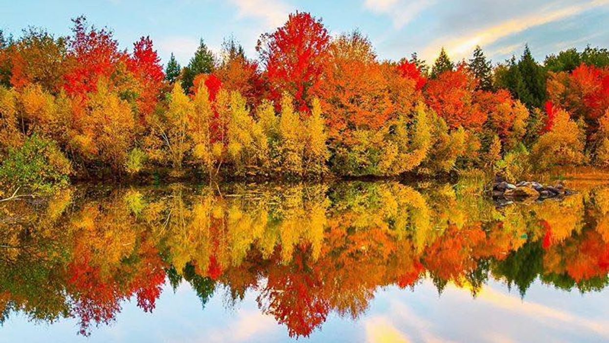 It's Official, Quebec's Fall Foliage Is Going To Be More Beautiful Than Ever This Year