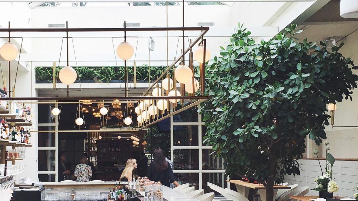 """Montreal Opens All-New """"Indoor Garden"""" Restaurant"""