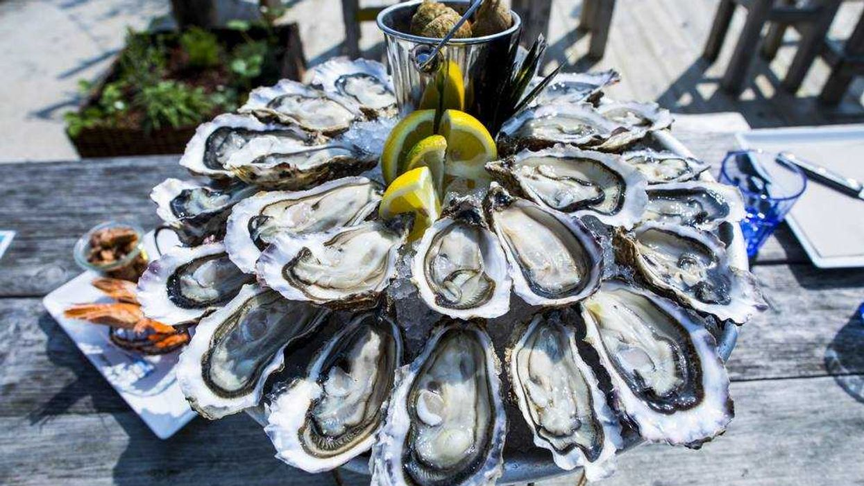 "Montreal Is Hosting Quebec's Biggest ""Oyster Festival"" Ever"