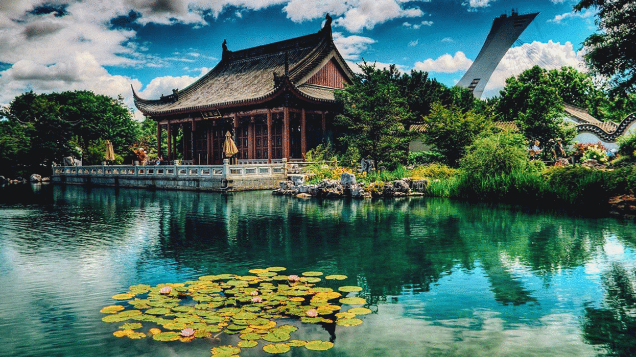 Montreal's Botanical Garden Will Be Free For A Day In May