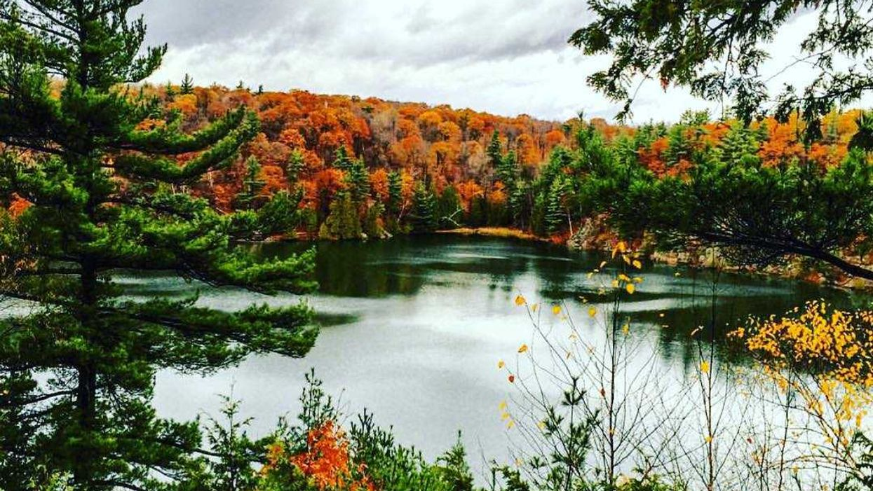 10 Insane Spots You Can View Fall Colours In Cottage Country That Are Super Close To Montreal