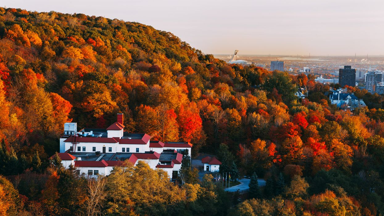 45 Pictures Proving Fall In Montreal Truly Is The Most Beautiful Of All