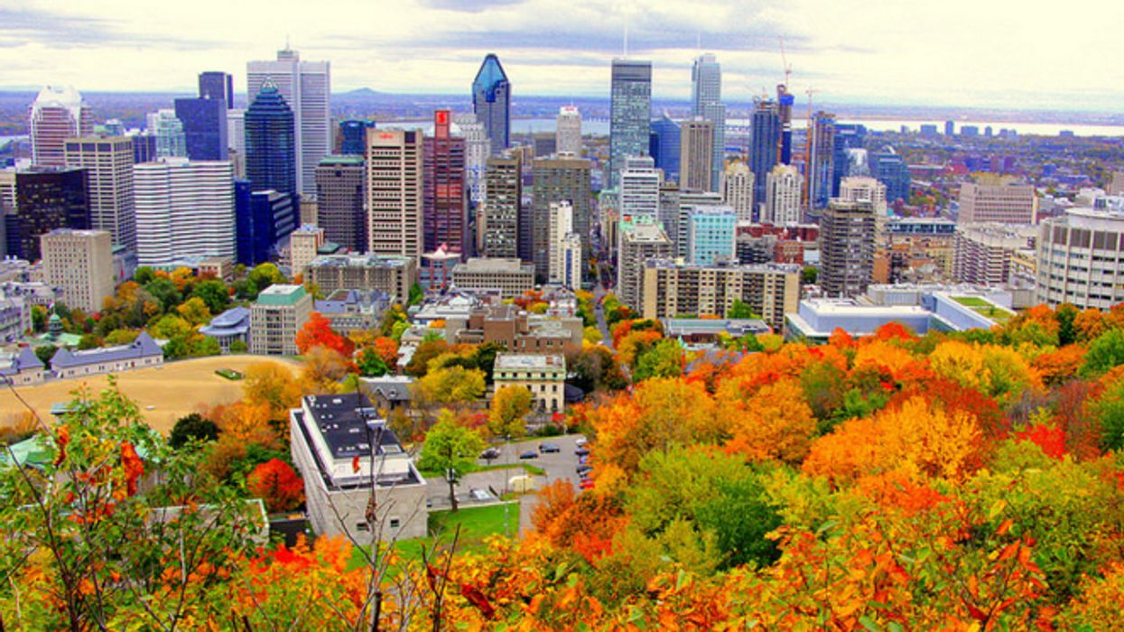 22 Free Things To Do This November 2015 In Montreal