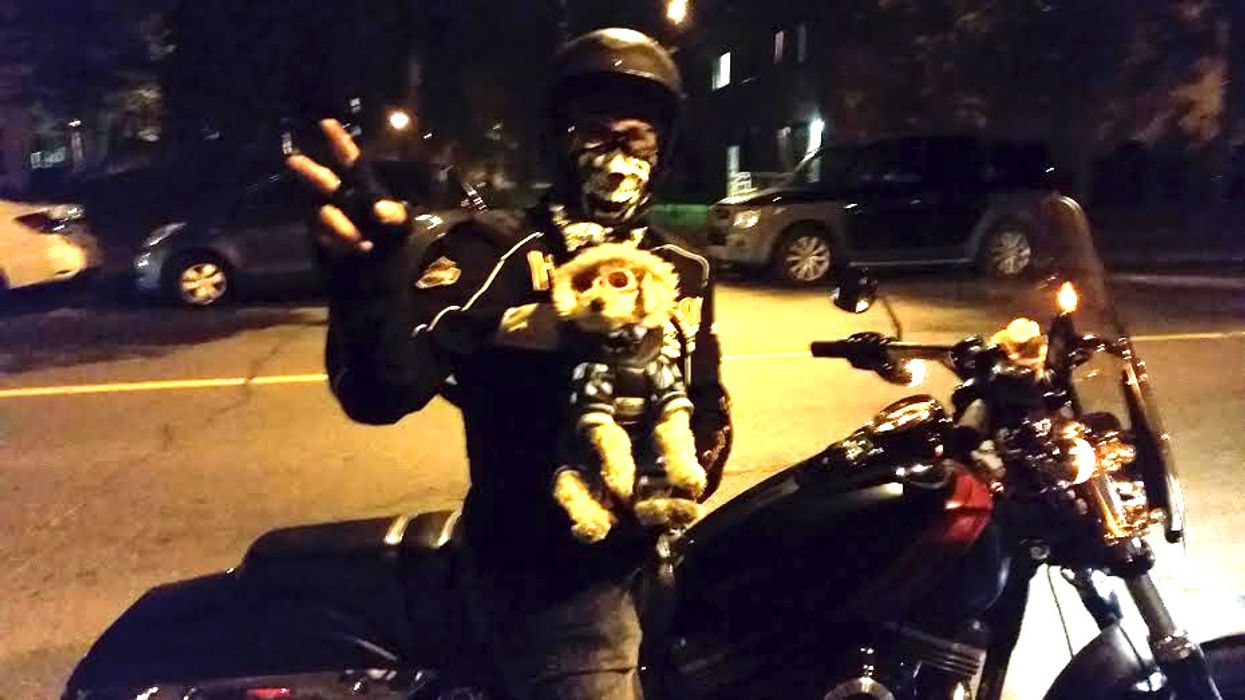 Coolest Puppy In Montreal Spotted Riding A Motorcycle