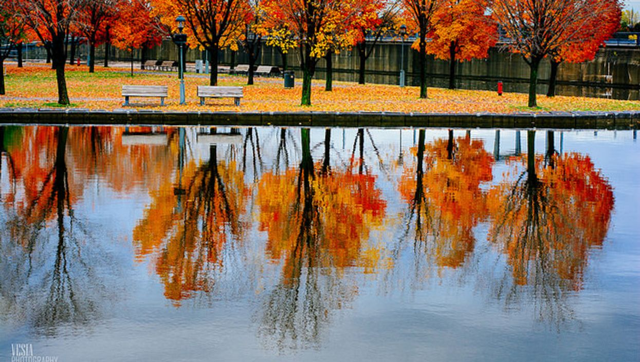 The Best Pictures Of Fall In Montreal
