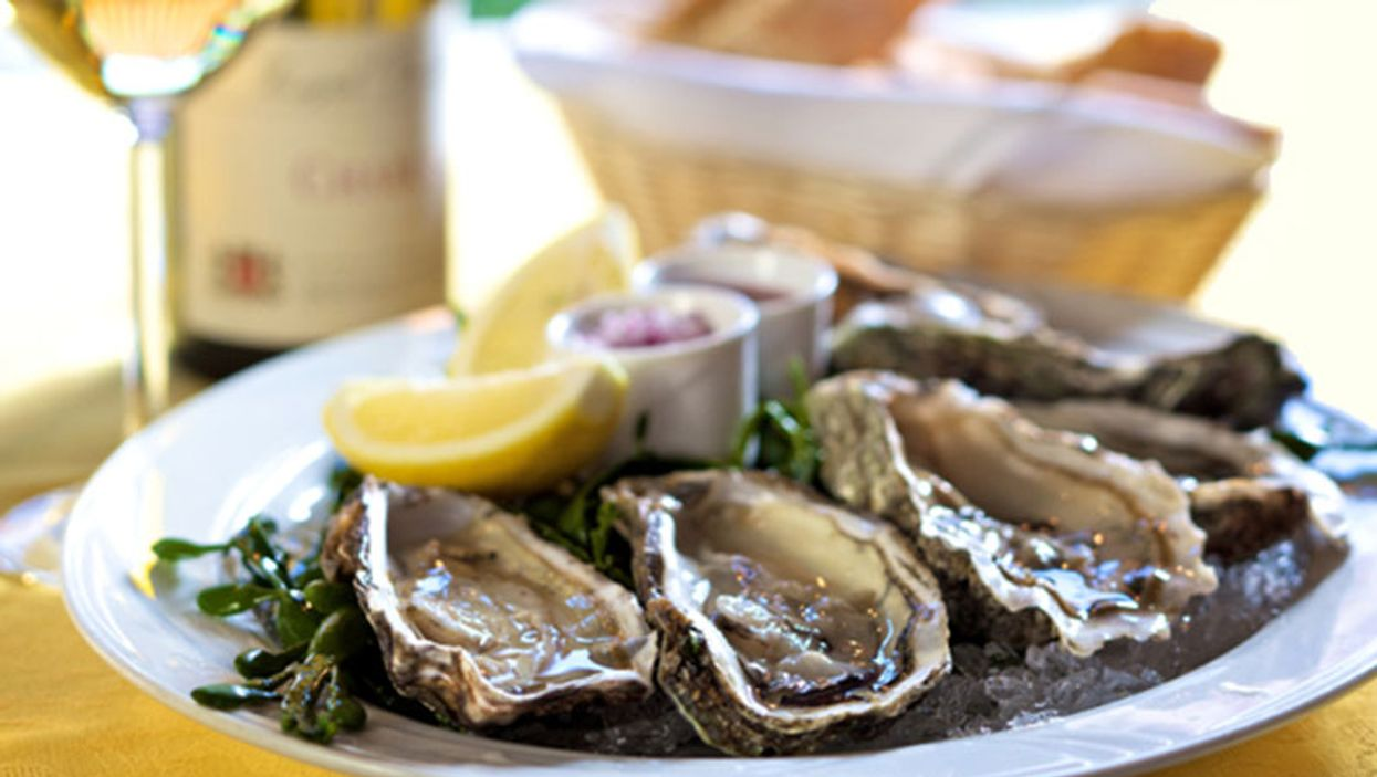 Where To Eat Cheap Oysters In Montreal