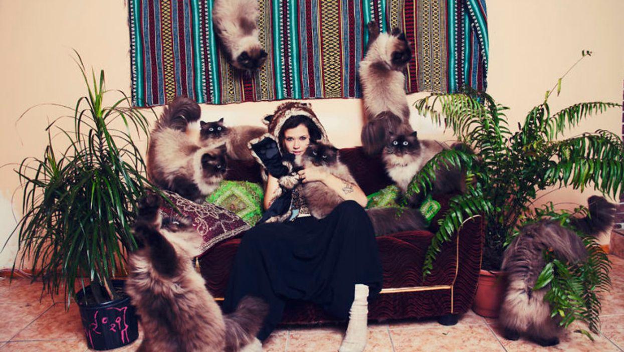 20 Photos Of Montreal's Craziest Cat Lovers