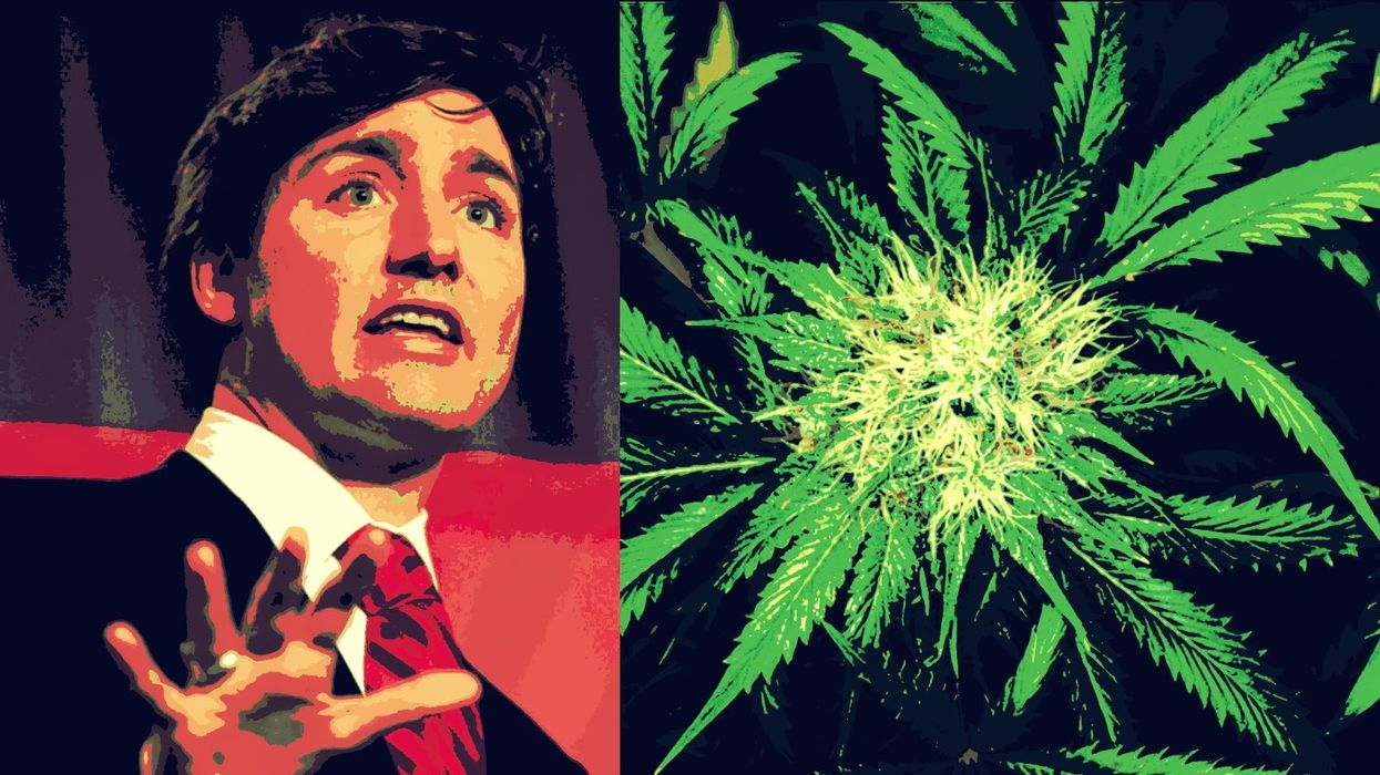 Justin Trudeau Says Fvck It, Let's All Roll A Joint