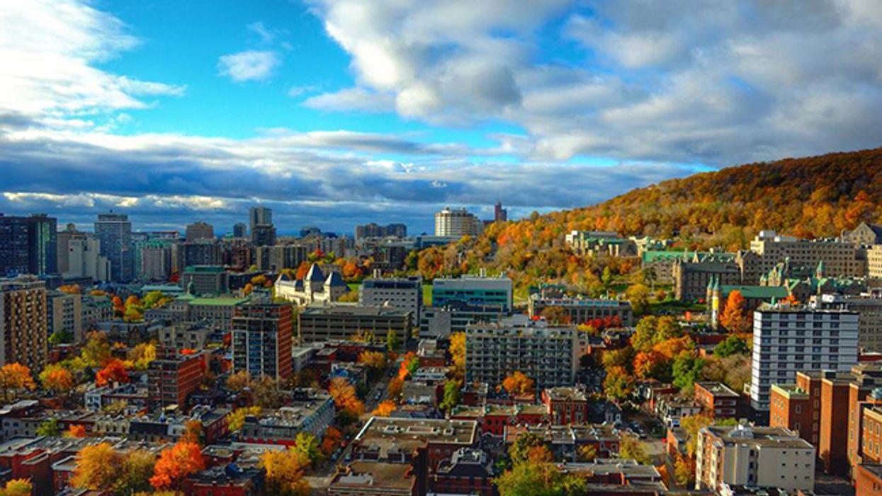 20 Ways Montrealers Win At Life