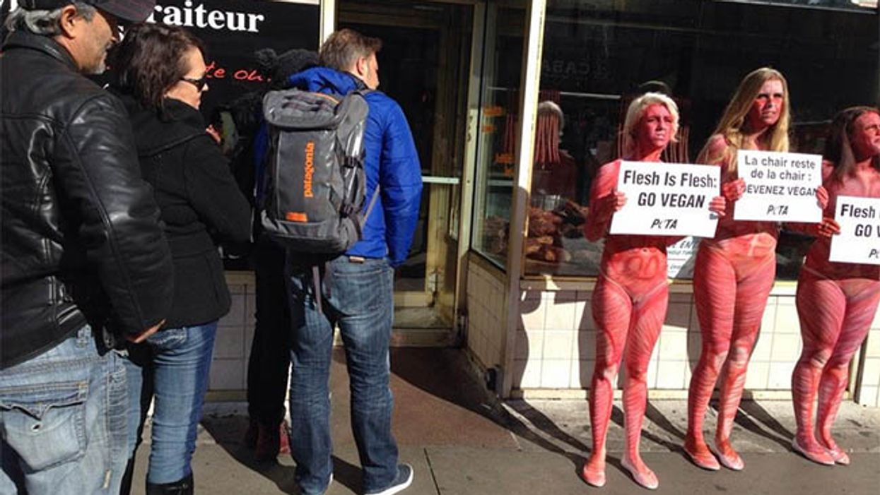 """""""Naked"""" Female PETA Protesters Spotted In Front Of Montreal's Schwartz's On Saint-Laurent Street"""
