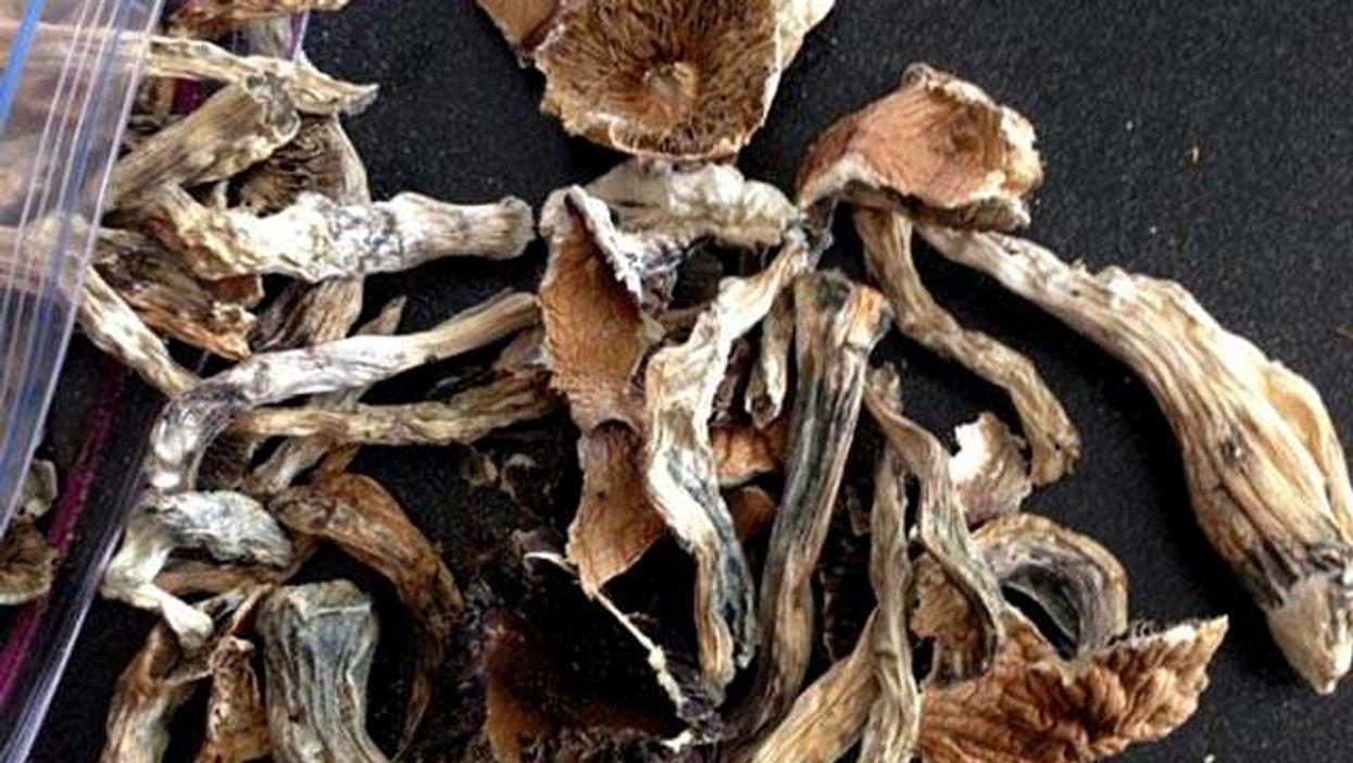 Eating Magic Mushrooms Can Help You Stop Smoking Cigarettes