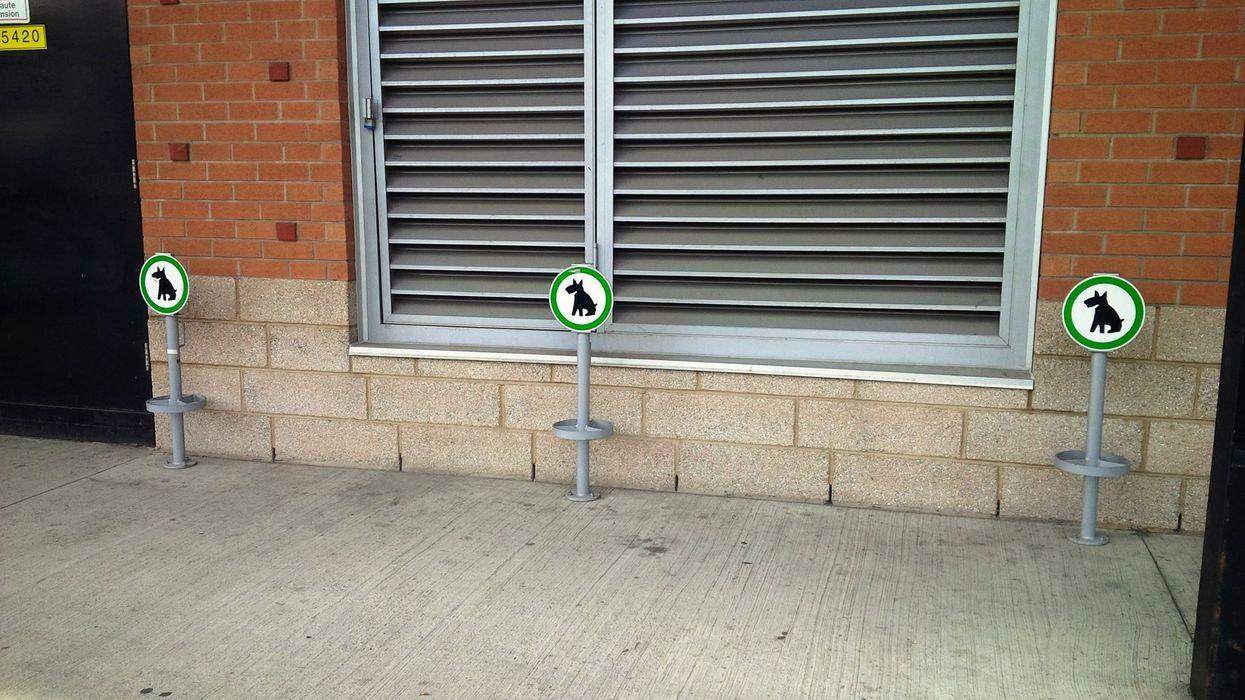 "Montreal's Jean-Talon Market Installs ""Dog Parking"" Stations"