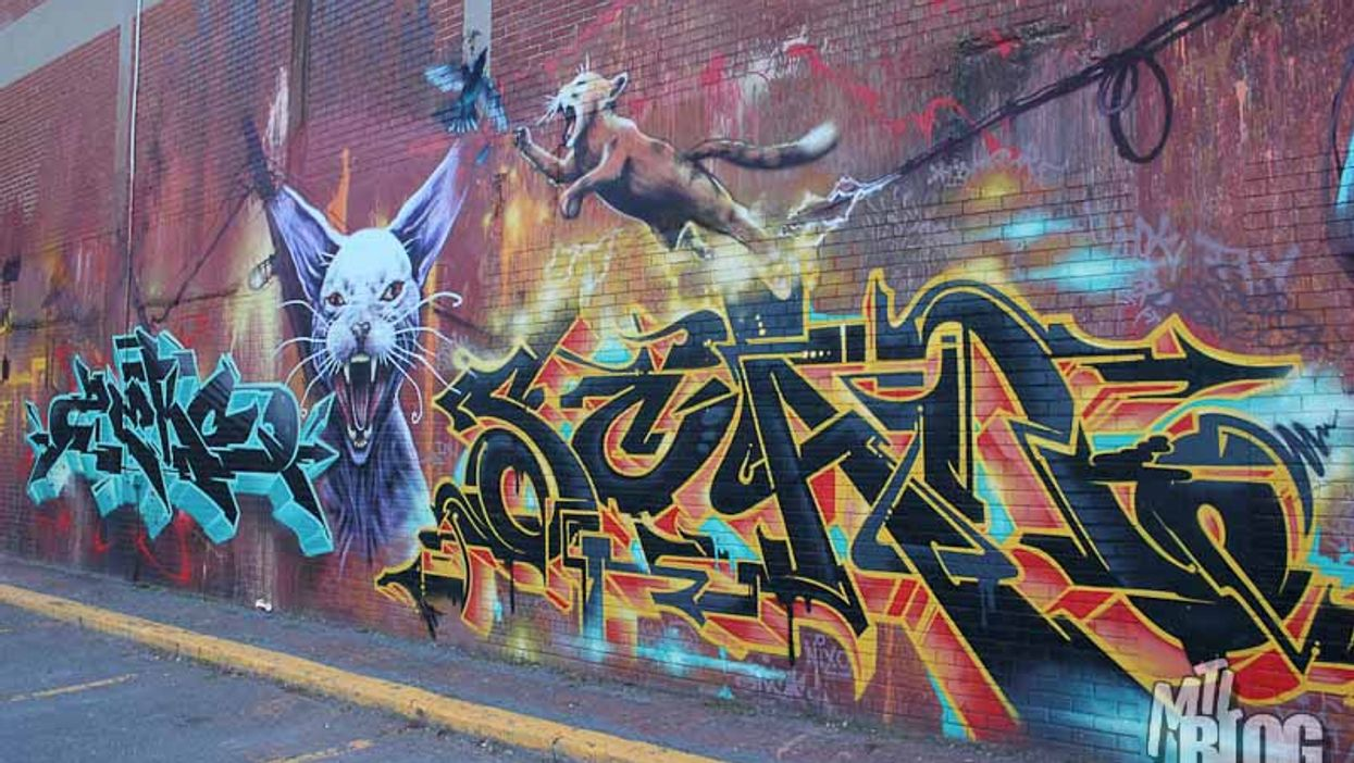 MTL Bike: Cam Novak's Street Art Bike Tours Are Something Special