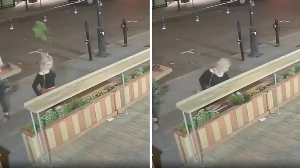 Café Myriade Video Shows Someone Rip Flowers From Terrasse
