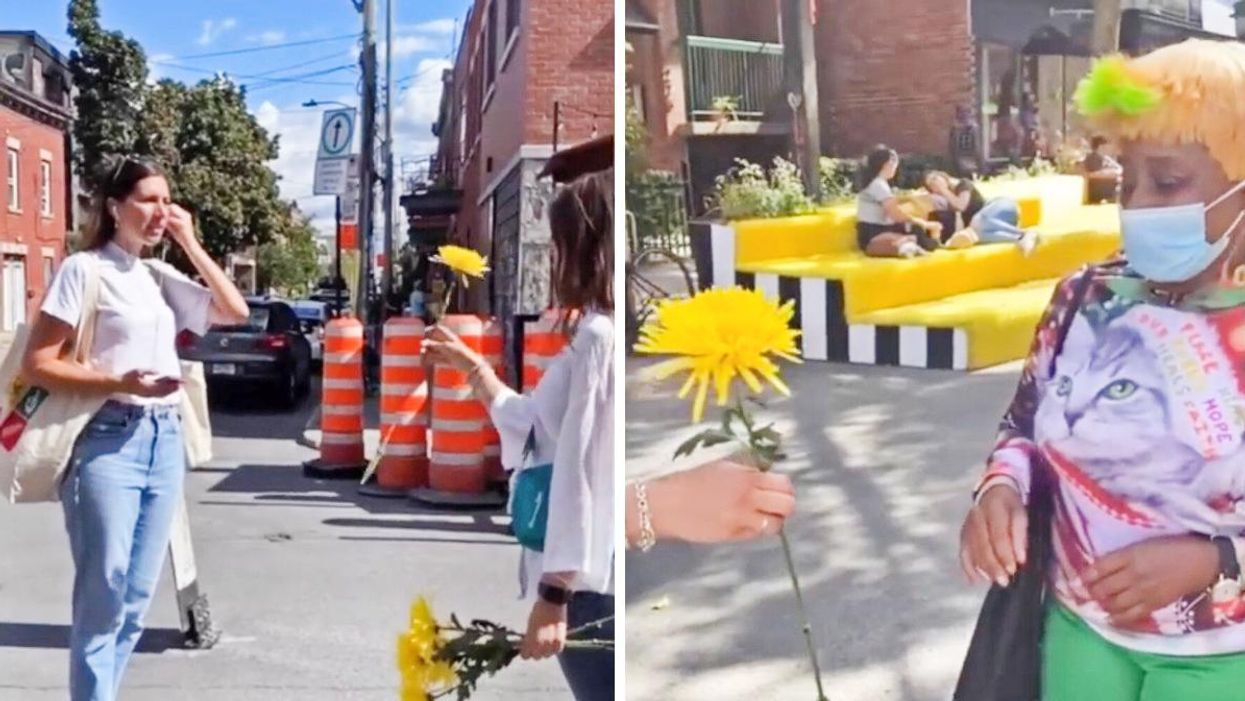 Happy Tears Montreal Handed Out Flowers In The Street & The Video Is Filled With Utter Joy