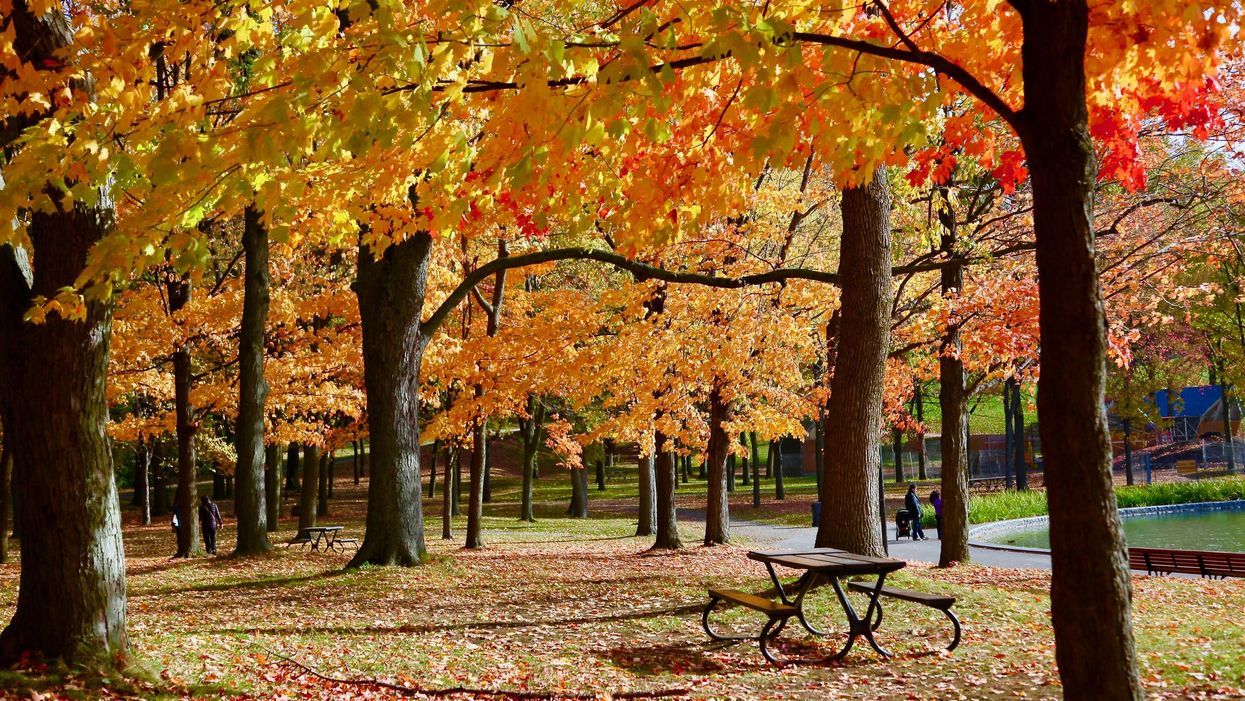 Quebec's New Fall Forecast Says Winter Is Coming Early But There's Also Good News
