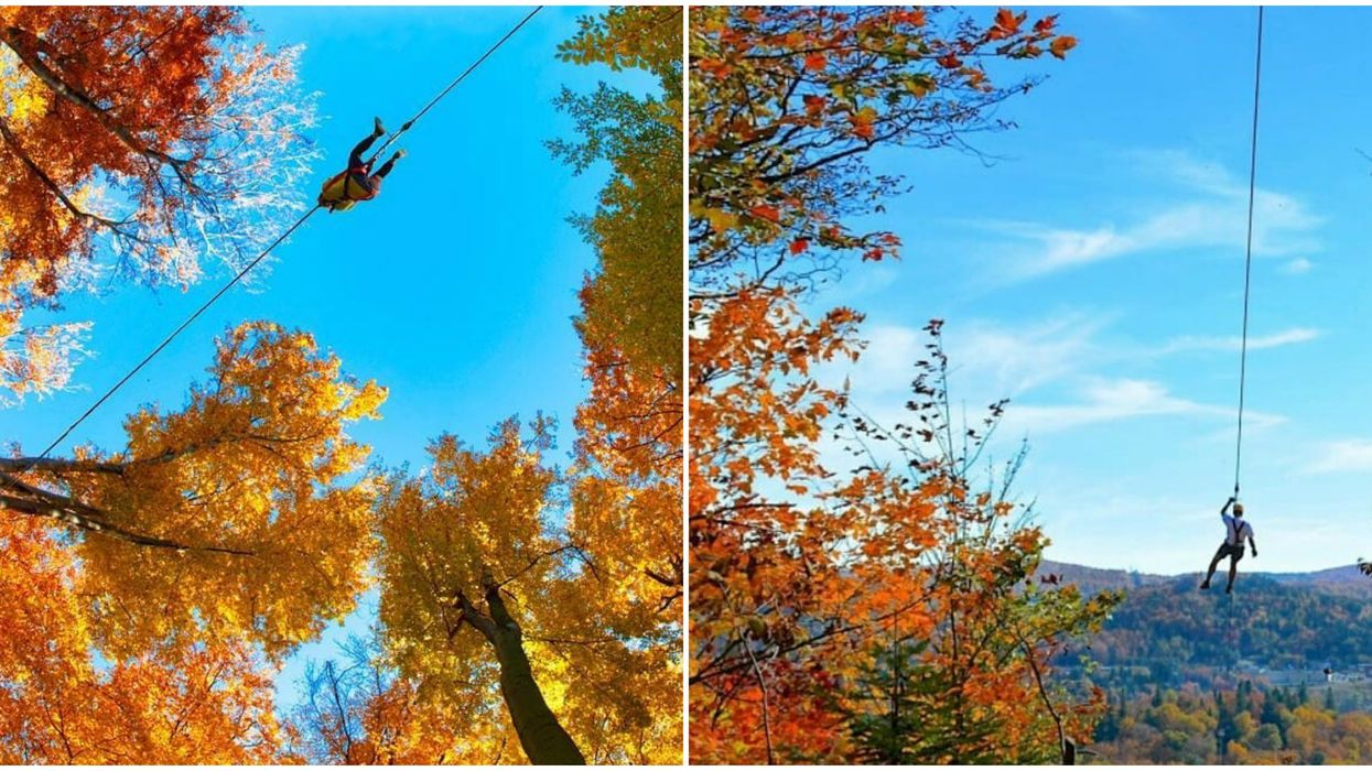 Highest Zip Line In Quebec Offers Panoramic Views Of The Fall Colours
