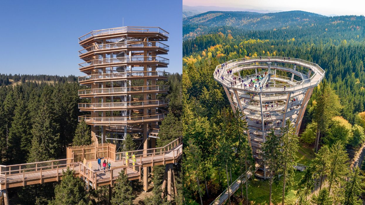 A Huge Tower Is Being Built In The Laurentians & You'll Be Able To Walk Among Treetops